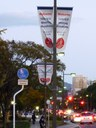 IETF at the City of Hiroshima